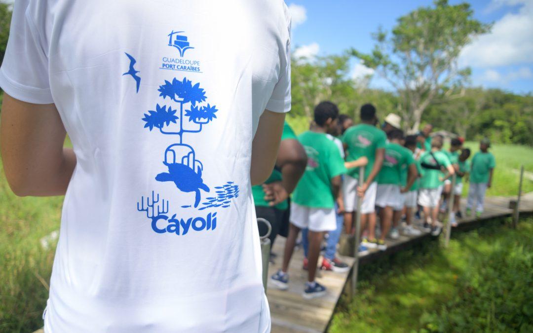 A la découverte de la mangrove